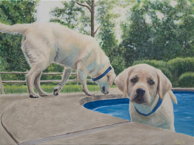 Labradors, Swimming Pool, Outdoors, Dogs bathing in Pool, Oil on Canvas, Pet Portrait