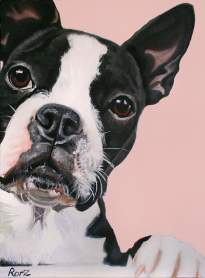 Boston Terrier, Oil Portrait, Oil on Canvas, Pet Painting, Custom Commission